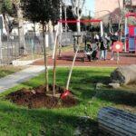 Un albero per Federica Stiffi - 046